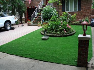 Artificial Grass Photos: Synthetic Turf Kennedale Texas  Landscape  Back Yard