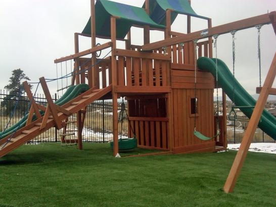 Artificial Grass Photos: Synthetic Grass Blue Ridge Texas Playgrounds  Front Yard
