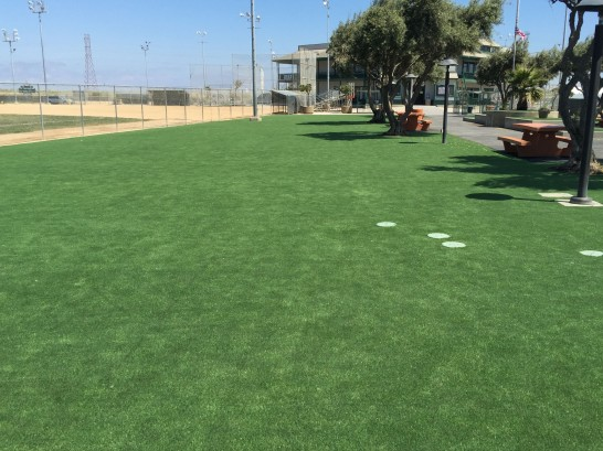Fake Turf Eustace, Texas artificial grass