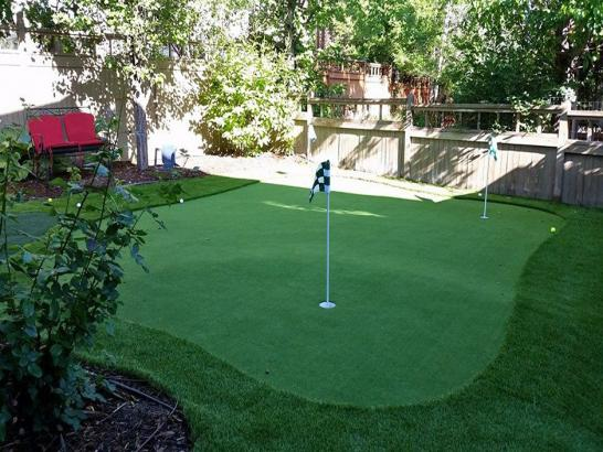 Fake Turf Aurora Texas Lawn  Parks artificial grass
