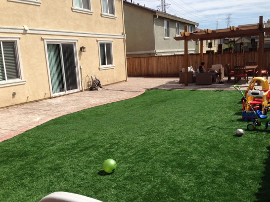 Artificial Grass Photos: Synthetic Grass Cost Whitewright, Texas