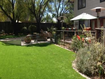 Artificial Turf Lewisville Texas  Landscape  Back Yard artificial grass
