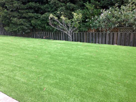 Artificial Grass New Hope Texas  Landscape artificial grass