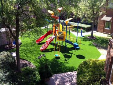 Artificial Grass Oak Leaf Texas  Landscape  Commercial Landscape artificial grass