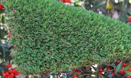 syntheticturf Patriot Spring-76