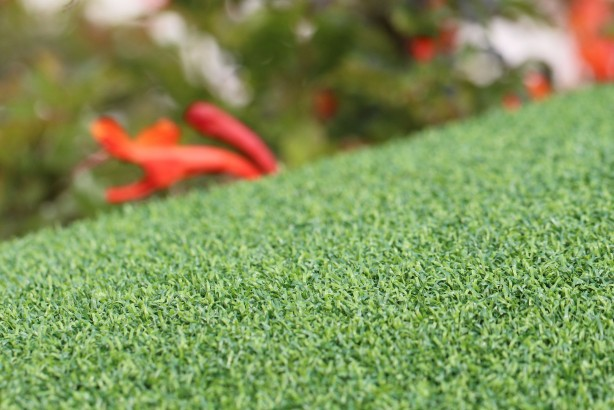 syntheticturf Putt-60 Bicolor
